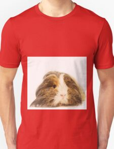 Cute Sheltie Long Hair Guinea Pig photo print Unisex T-Shirt