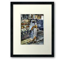 White Post Gold Rose - Blackpool Framed Print