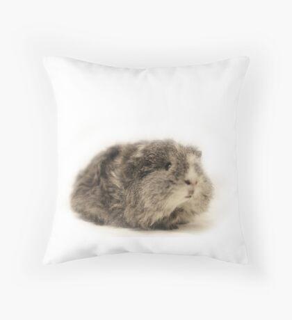 Cute Grey Baby Guinea Pig  Throw Pillow