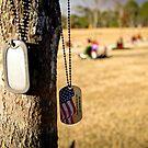 in honor of an American hero by piwaki