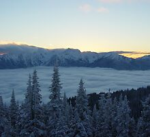 Winter Sunset at Hurricane Ridge by mrscaer