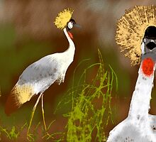 Grey crowned cranes by Sally O'Dell