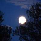 The Buddha Full Moon by HELUA