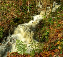 Waterfall at High Dam by Jamie  Green