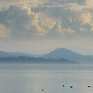Lago Trasimeno from Passignano Sul Trasimeno, Umbria. Italy by Andrew Jones