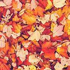 Scarlet Leaves  by Debbra Obertanec