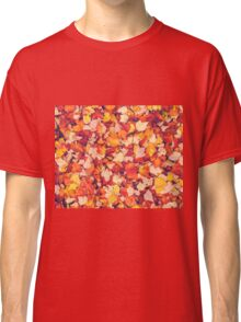 Scarlet Leaves  Classic T-Shirt