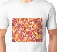 Scarlet Leaves  Unisex T-Shirt