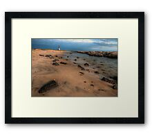 Barnegat Lighthouse State Park Framed Print