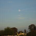 Full bright moon by armando ruiz