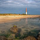 Lighthouse at Barnegat by Michael Mill