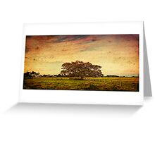 ~ the fig tree ~ Greeting Card