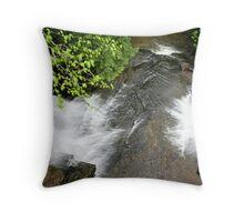REDREAMING: WATER FALL FILLMORE GLEN  Throw Pillow