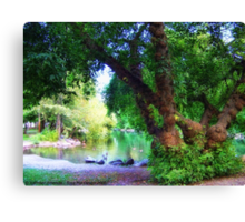 Woodland Park Pond Canvas Print