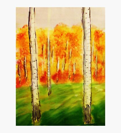 The Forest of Birch Trees, watercolor Photographic Print