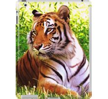 Tiger looking left iPad Case/Skin
