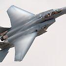 The Eagle Strikes! by gfydad