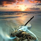 Papamoa Serpent Dawn by Ken Wright