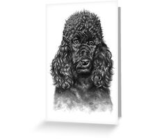 Poodle Portrait Greeting Card