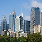 sydney skyline Australia by martinberry