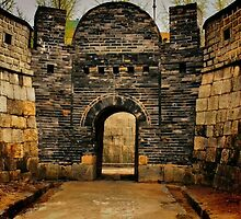Hwaseong Fortress Gate by Barbara  Brown