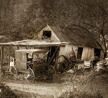 Rural Relics by Lori Deiter