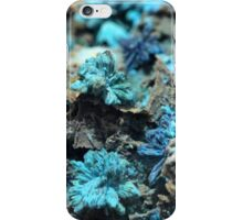The Hidden Land – The Reef iPhone Case/Skin