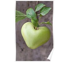 heart apple on tree Poster