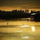 Misty Morn, St Helens by Georgie Hart