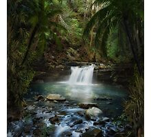 The Jungle 2 Photographic Print