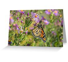 Papillon Monarque Greeting Card