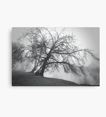 Trees bend to caress me Canvas Print