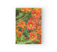 Concept Apples Hardcover Journal