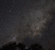 Night Sky- Milky Way by Paul  Donaldson