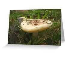 Giant Mushroom Greeting Card