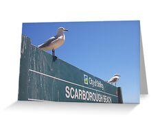 Seagull Sentinels Greeting Card