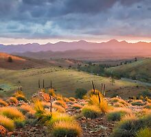 Wilpena Pound by Robert Dettman