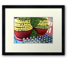 Soda Lime Framed Print