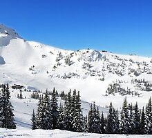 Whistler Summit Panorama, British Columbia by Charles Kosina