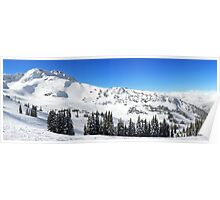 Whistler Summit Panorama, British Columbia Poster