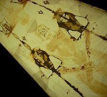 Shroud of Turin 04 by Bela-Manson