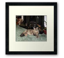 07 - JASPER - 01 - DAVE EDWARDS (D.E. 2011) Framed Print