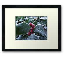 Winter Morn Framed Print