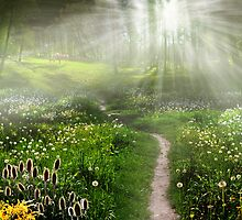 Meadow Trail by Igor Zenin