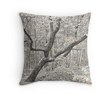 Climb It Throw Pillow