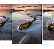 Deadwood Drifting ~ Papamoa Dusk Triptych by Ken Wright