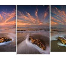 Deadwood ~ Papamoa Electric Dusk Triptych by Ken Wright