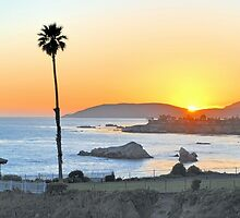 Pismo Beach by Toby Wilson
