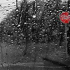 Looking Through the Rain by DionNelson