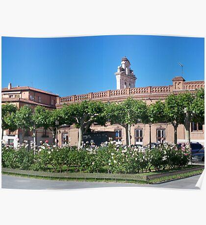 Stork nest, Cervantes Plaza, Alcala de Henares, Madrid, Spain Poster